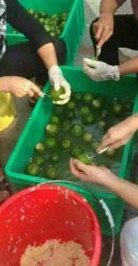 Het verwijderen van het vruchtvlees