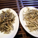 Silver Needle, links uit Zhenghe, rechts uit Fuding