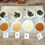 De invloed van water op je thee